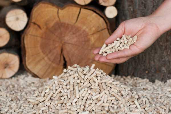 Сырьем для  производства пеллет  могут быть отходы деревообрабатывающей промышленности а также растениеводства