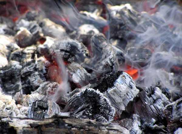 Изготовление древесного угля - перспективное направление