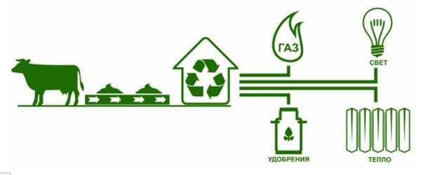Биогаз своими руками