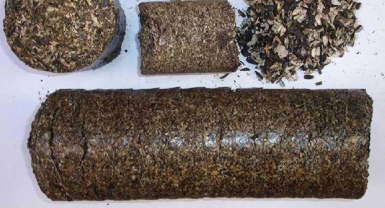 Брикеты из лузги подсолнечника - отходы в доходы