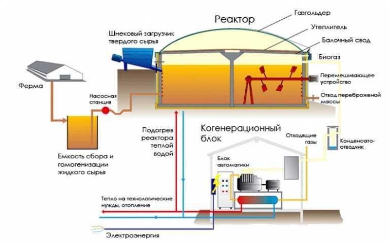 Как можно организовать переработку навоза в биогаз