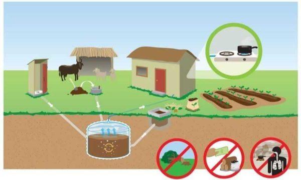 Автономное отопление частного дома можно организовать при помощи выработанного на участке газа - из отходов животноводства и растениеводства (биогаз)